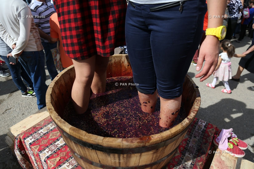 Фестиваль вина Арени - 4