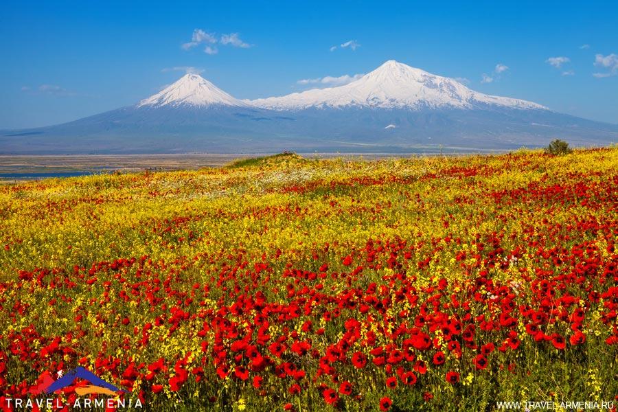 Великолепная Армения (7 дней)